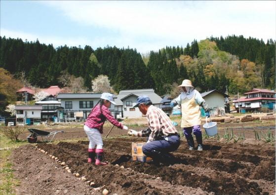 re_№94 楽しい畑仕事①
