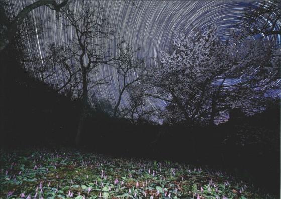 re_№2 真夜中の大林公園